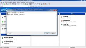Enlarge Wireshark Screenshot