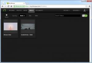 Enlarge Bitcasa Screenshot