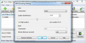 Enlarge Prism Video File Converter Screenshot