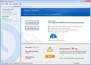Enlarge Auslogics BitReplica Screenshot