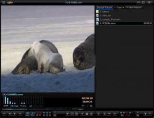 Enlarge Daum PotPlayer Screenshot