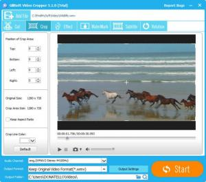 Enlarge GiliSoft Video Editor Screenshot