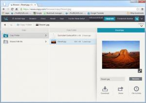 Enlarge Copy Screenshot