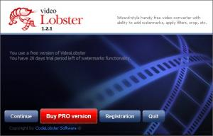 Enlarge VideoLobster Screenshot