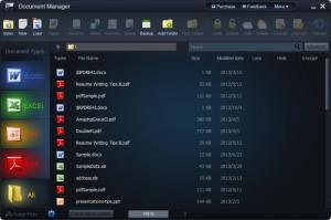 Enlarge WonderFox Document Manager Screenshot