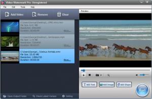 Enlarge Video Watermark Pro Screenshot