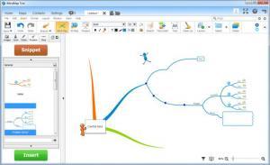 Enlarge iMindMap Screenshot