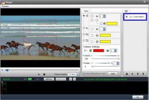 Enlarge WonderFox Video Watermark Screenshot