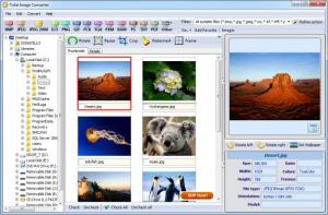 Enlarge Total Image Converter Screenshot