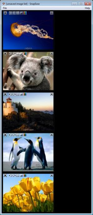 Enlarge SnapEase Screenshot