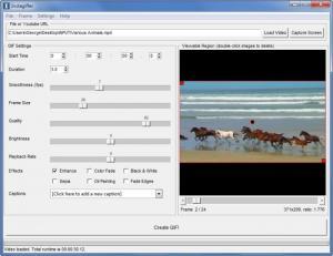 Enlarge Instagiffer Screenshot