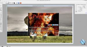 Enlarge e-Paint Screenshot