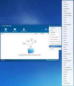 Enlarge Wise Folder Hider Screenshot