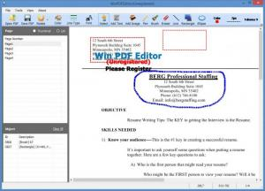 Enlarge WinPDFEditor Screenshot