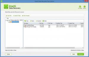 Enlarge KiwiG Data Recovery Screenshot