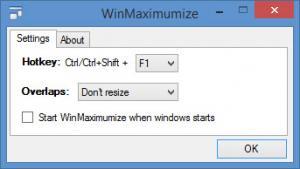 Enlarge WinMaximumize Screenshot