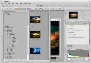 Enlarge Capture NX Screenshot
