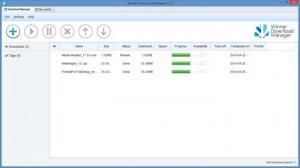 Enlarge Winner Download Manager Screenshot