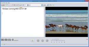 Enlarge Easytranscript Screenshot