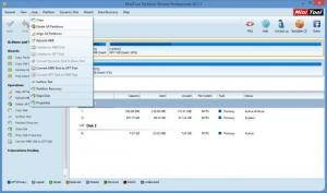 Enlarge MiniTool Partition Wizard Professional Edition Screenshot