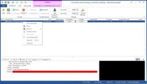 Enlarge ManyDownloader Screenshot