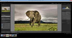 Enlarge Adobe Photoshop Lightroom Screenshot