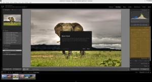 Enlarge Adobe Photoshop Lightroom Screenshot