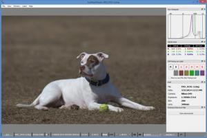 Enlarge FastRawViewer Screenshot