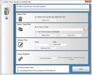 Enlarge Duplicate Cleaner Pro Screenshot