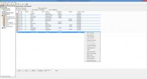 Enlarge Money Manager EX Screenshot