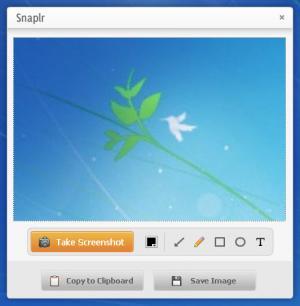 Enlarge Snaplr Screenshot