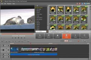 Enlarge Movavi Video Editor Screenshot
