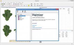 Enlarge Digimizer Screenshot