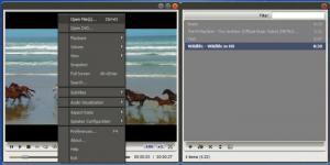 Enlarge AMPlayer Screenshot