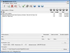 Enlarge MegaMind Converter Screenshot
