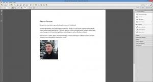 Enlarge Adobe Acrobat Pro Screenshot