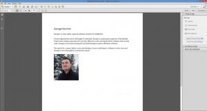 Enlarge Adobe Acrobat Pro Screenshot