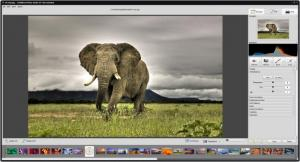 Enlarge Soft4Boost Photo Studio Screenshot
