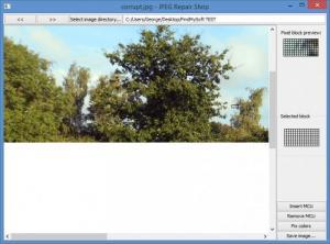 Enlarge JPEG Repair Shop Screenshot
