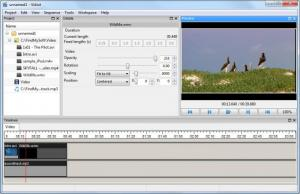 Enlarge Vidiot Screenshot