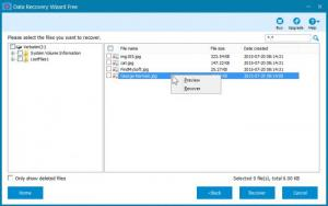 Enlarge Data Recovery Wizard Free Screenshot