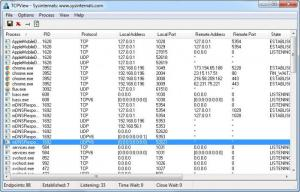 Enlarge TCPView Screenshot