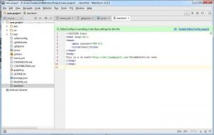 Enlarge WebStorm Screenshot
