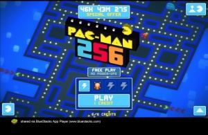 Enlarge PAC-MAN for Windows PC Screenshot