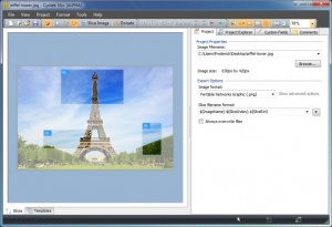 Enlarge Cyotek Slicr Screenshot