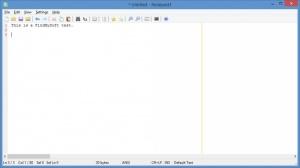 Enlarge Notepad3 Screenshot