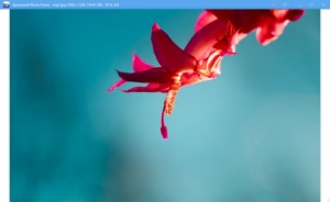Enlarge Apowersoft Photo Viewer Screenshot