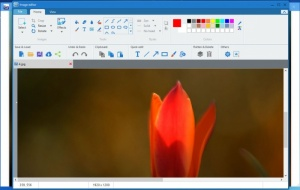 Enlarge Apowersoft Photo Viewer Screenshot