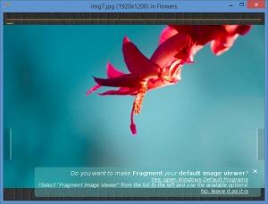 Enlarge Fragment Screenshot