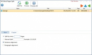 Enlarge MS Word Pages Split Screenshot